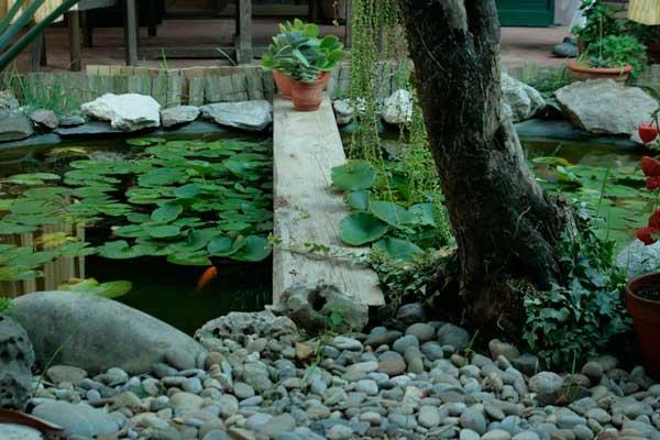 En el jard n del caqui pilar sampietro el correo del sol for Cementerio parque jardin del sol pilar