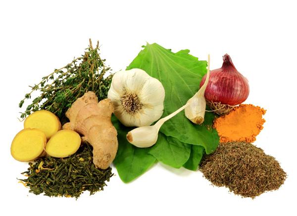 30 alimentos con propiedades antibi ticas el correo del sol - Alimentos adelgazantes naturales ...