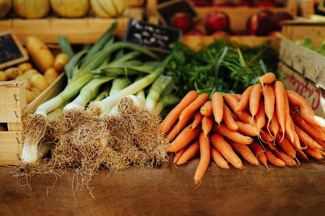 Organizaciones y científicos europeos piden una normativa más estricta sobre pesticidas