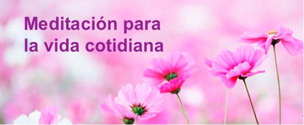 meditación vida cotidiana flores