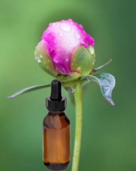 La receta del refuerzo de los cabello del aceite de bardana