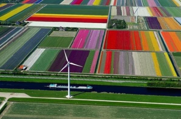 Holanda, a vista de pájaro y click del gran Normann Szkop