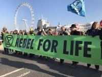 Rebelión o extinción: la nueva ola de la acción ecologista