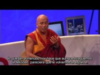 Matthieu Ricard 2004 Sobre los hábitos de la felicidad subtitulado español