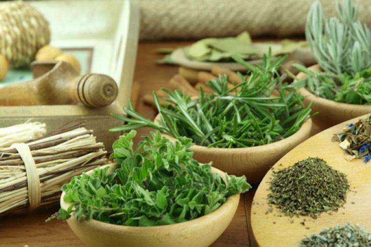 Los 43 mejores remedios naturales | El Correo del Sol