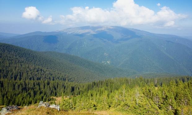 Montañas de Tarcu
